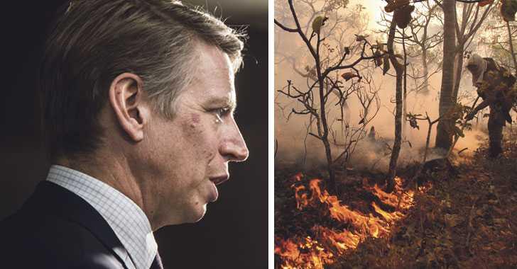 """Kunderna rasar mot bankernas """"regnskogsfonder"""""""