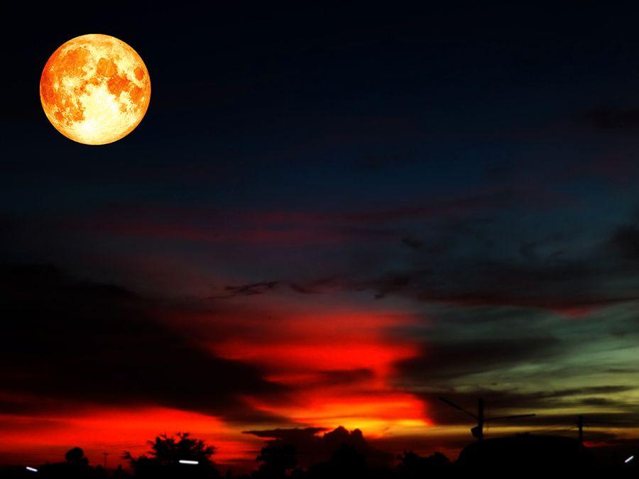 """En """"super blue blood moon"""" hör inte till vanligheterna."""