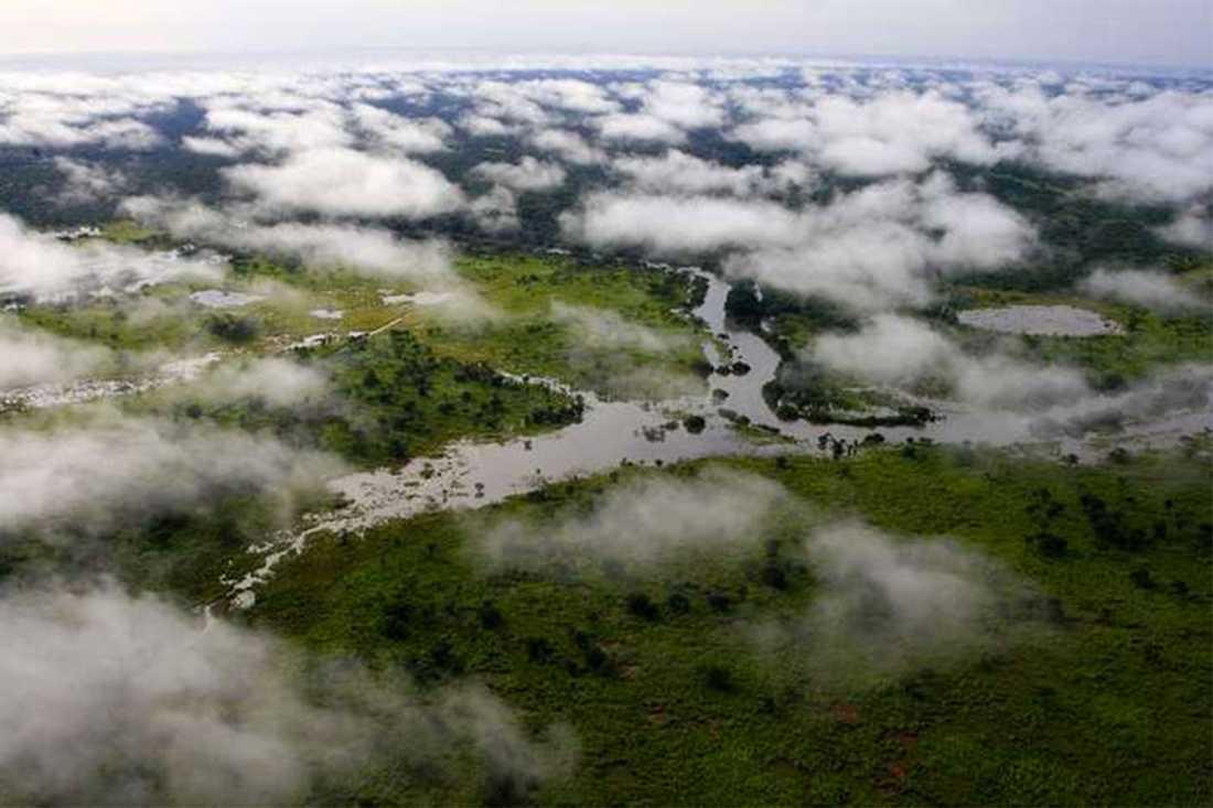 Garamba nationalpark i Kongo-Kinshasa.
