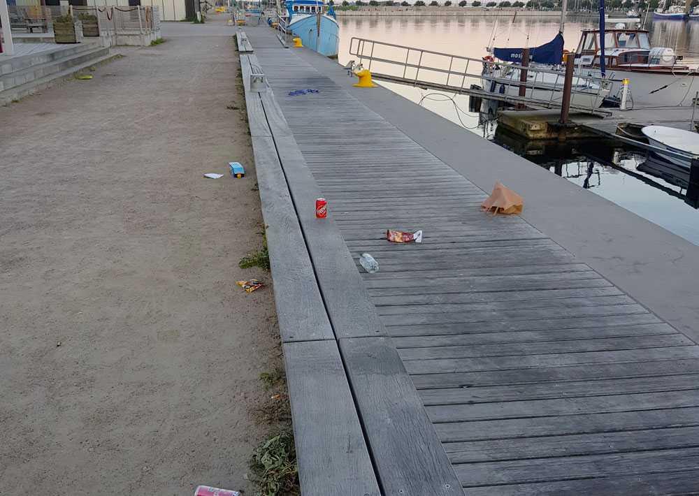 Ann-Christine Reimer hittar dagligen mängder av skräp på sina promenader.