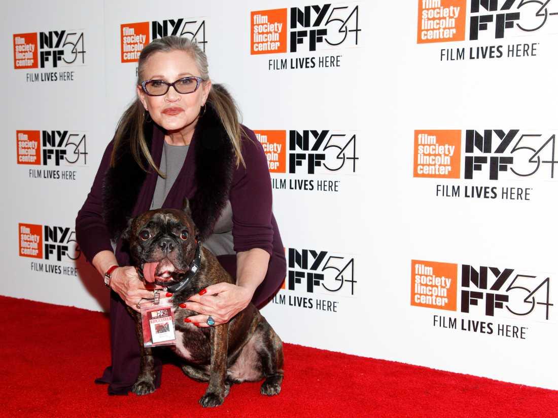 Carrie Fisher tillsammans med sin terapihund Gary.