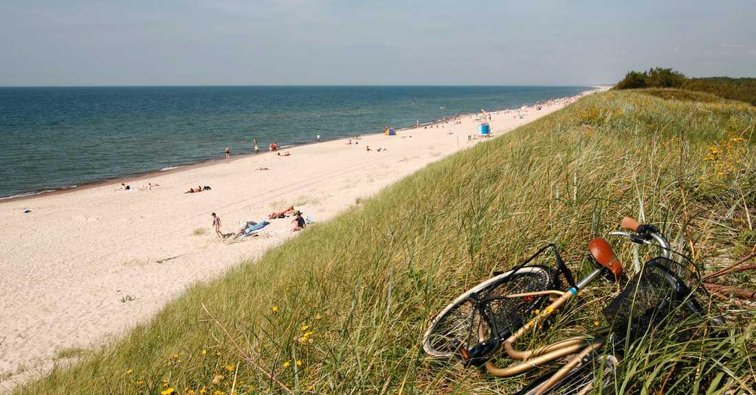 Den långa stranden vid Kuriska näset.