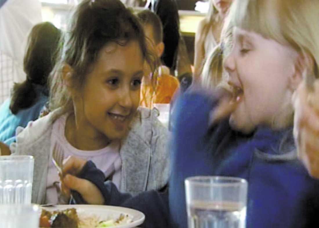Djurmat är bättre Svenska skolbarn som äter köttbullar och potatismos. Nu har måltiden jämförts näringsmässigt med kattmat. Då visar det sig att kissarna får i sig betydligt nyttigare mat.