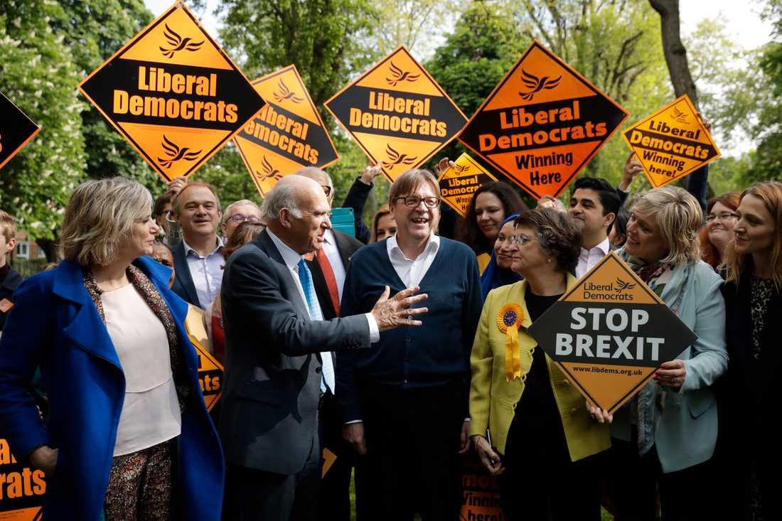EU-vänliga Liberaldemokraterna hoppas på framgångar i det brittiska EU-valet. Partiledaren Vince Cable (i mitten till vänster) har tagit hjälp av Belgiens förre premiärminister Guy Verhofstadt (i mitten till höger) under kampanjandet. Arkivfoto.