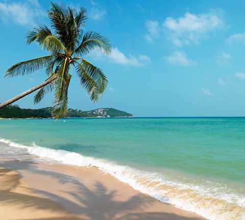Nu införs nya regler på Thailands paradisöar.