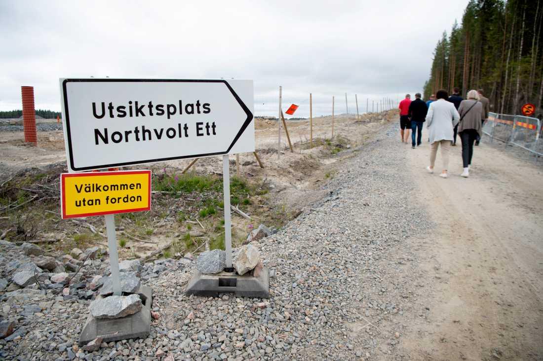 Nyfikna vill se området som är röjt för Northvolts planerade fabrik, några minuters bilväg öster om Skellefteå centrum.