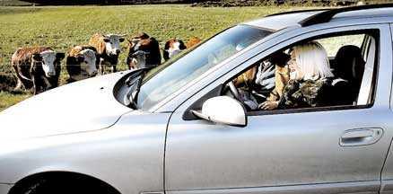 Här kör hon – utan körkort | Aftonbladet
