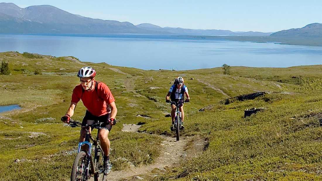 Lederna vid Riksgränsen är perfekta för mountainbike.