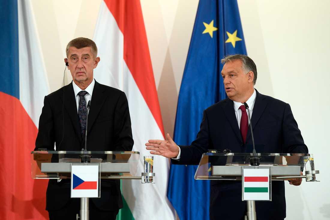 Tjeckiens premiärminister Andrej Babis och Ungerns Viktor Orbán kämpar för en EU-budget med mer pengar i regionalstöd. Arkivbild.