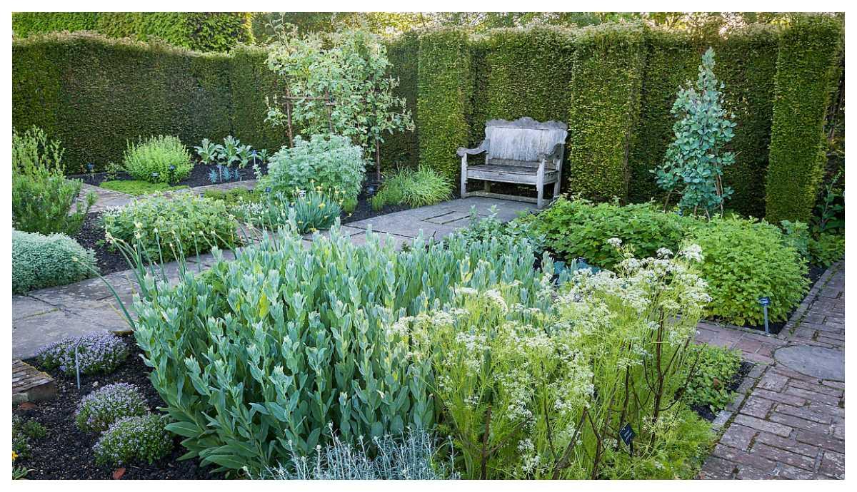 Örtagården i Sissinghurst.