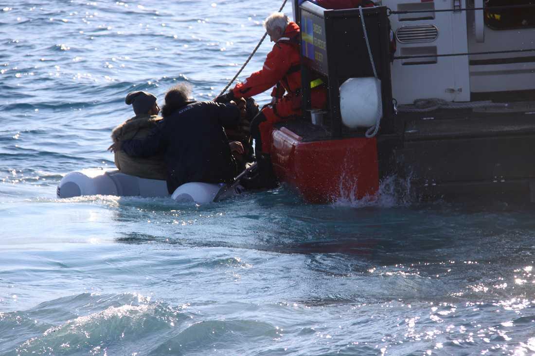 Gula båtarna hittade på fredagsmorgonen fyra män i en mycket liten gummijolle utan motor nära den turkiska gränsen. Därmed har Sjöräddningssällskapet undsatt över 1000 personer sedan insatsen inleddes i slutet av oktober.