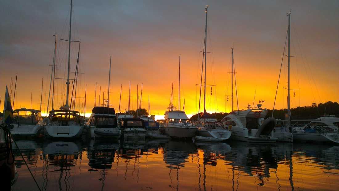Solnedgång bakom hamnen.