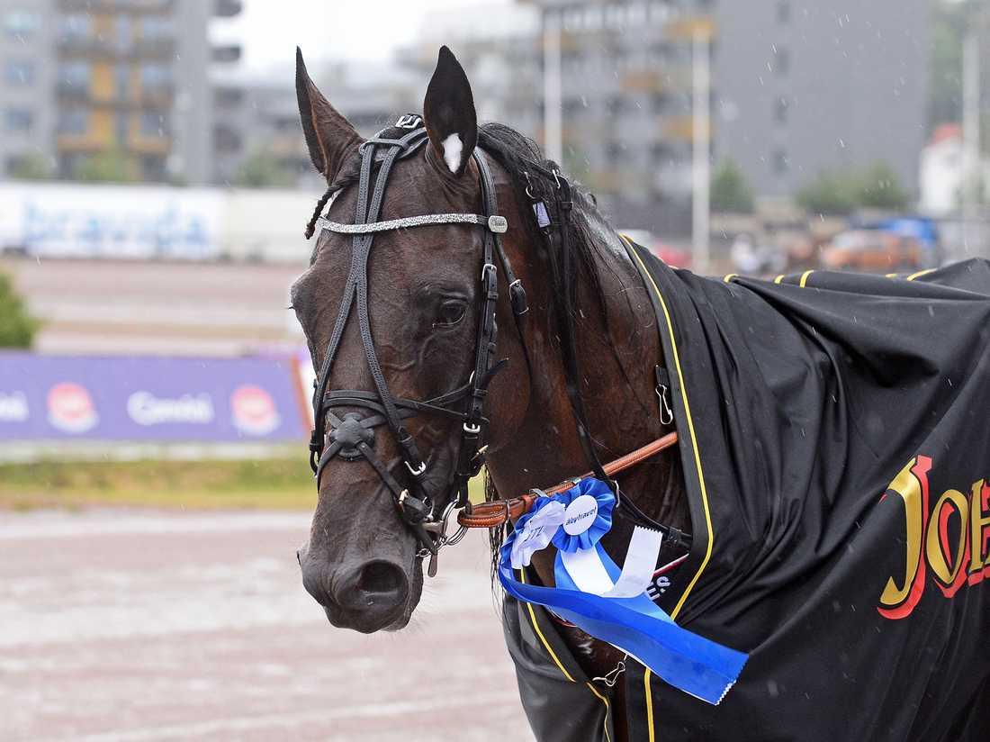 Velten Versailles spikas av Sportbladets Martin Berg på V64-spelet