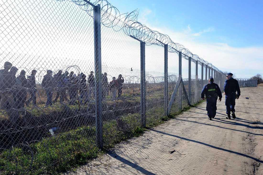 Under förra året byggdes det 175 kilometer långa taggtrådsstängslet vid gränsen mot Serbien och Kroatien.