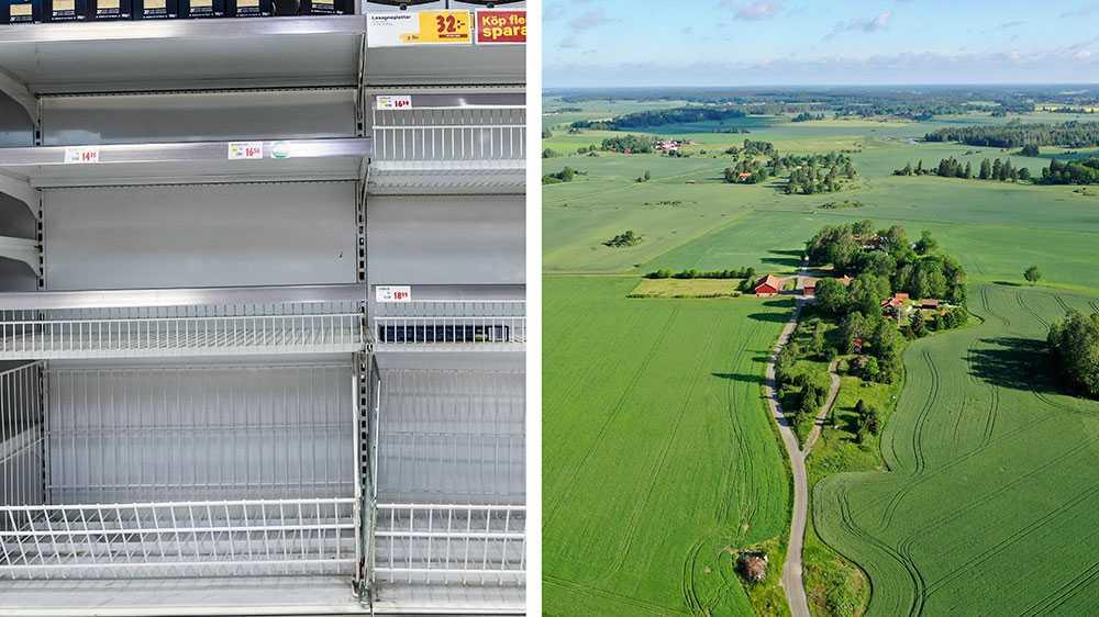 Vid en avspärrning finns det inte längre tillräckligt med mat till alla i Sverige. Det enda vi producerar tillräckligt av i Sverige är socker, spannmål och morötter, skriver styrelsen för Sveriges mjölkbönder.