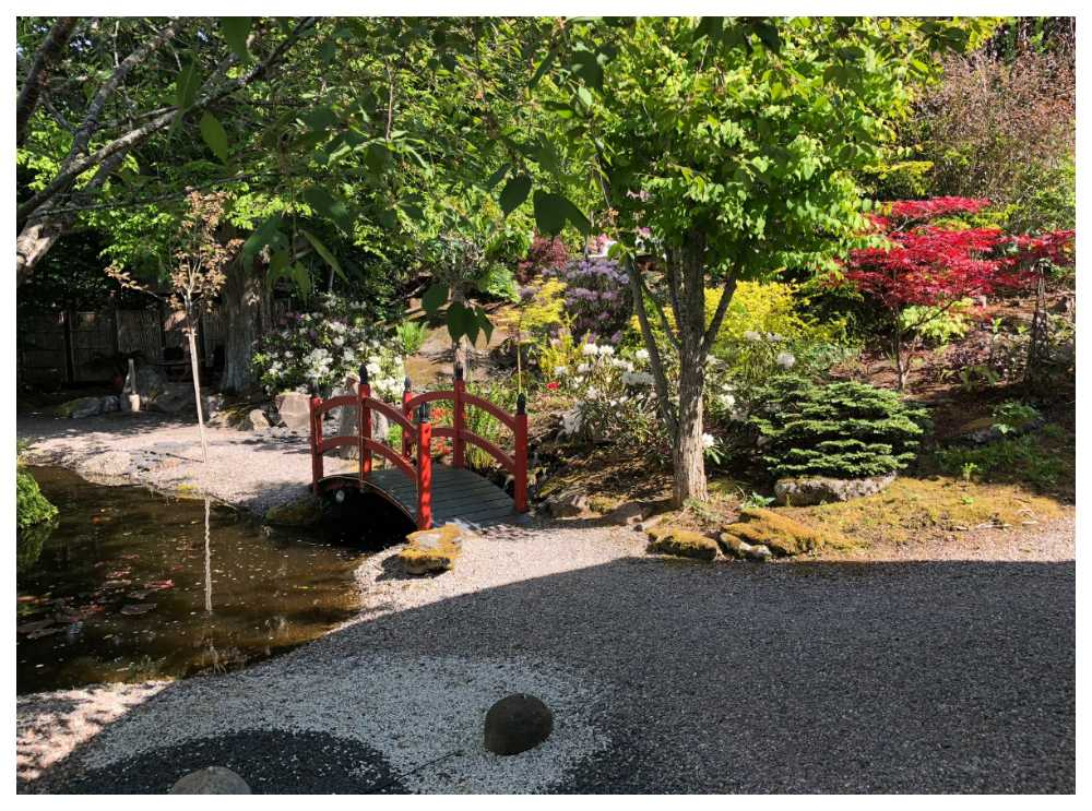 Klas och Margaretha Roos har skapat sig ett eget paradis, en japansk trädgård.