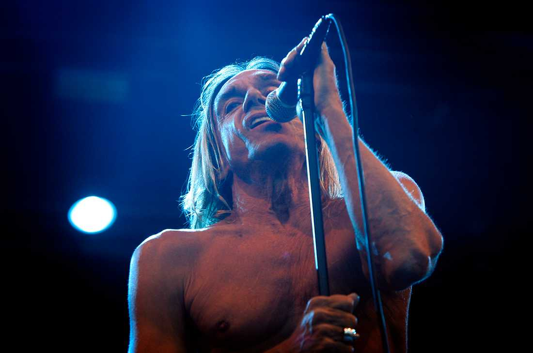 Iggy Pop & The Stooges, 2007.