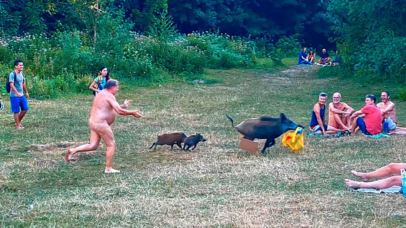 Här jagar mannen den svinaktiga tjuven – helt naken