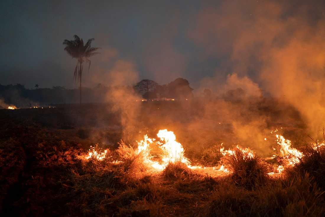 Hittills i år har fler än 72 000 bränder noterats.