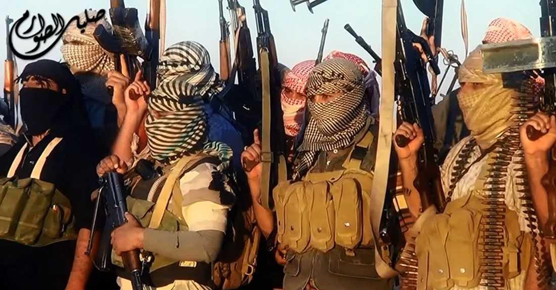 Jihadisterna tog flera viktiga irakiska städer efter en rad blixtattacker.