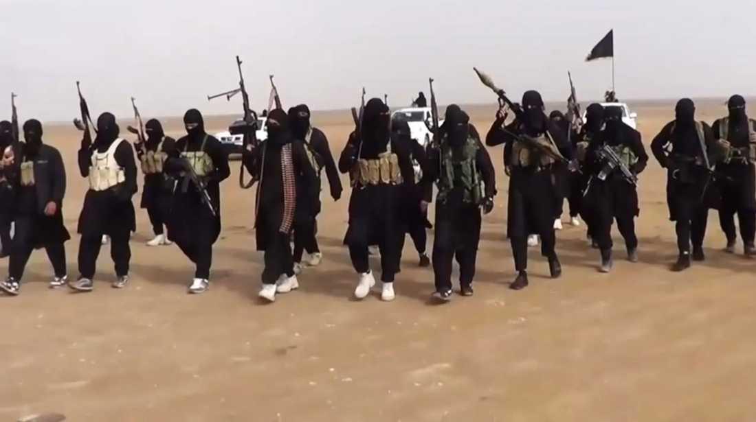 Trupper från terrororganisationen Isis (Islamiska staten i Irak och Syrien) har tagit över flera städer i Irak.
