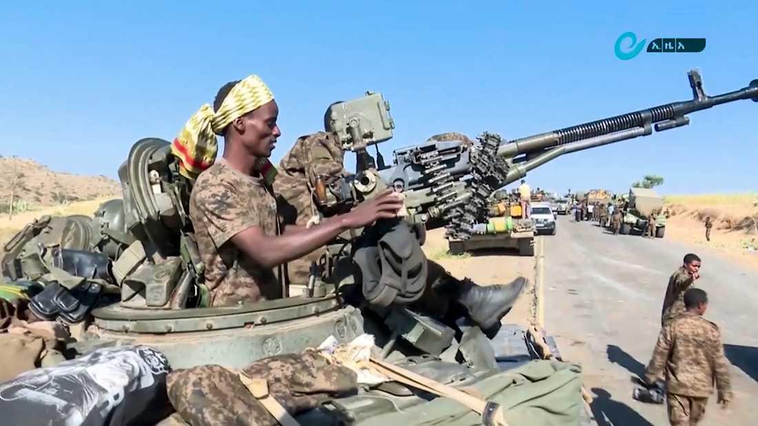 Denna bild, som distribuerats av Etiopiens statliga nyhetsbyrå, uppges visa federala styrkor som förra veckan förflyttade sig mellan regionerna Amhara och Tigray.
