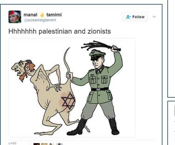 Den palestinska människorättskämpen Manal Tamimi har kritiserats för inlägg i sociala medier som är antisemitiska och uppmanar till våld mot israeler.