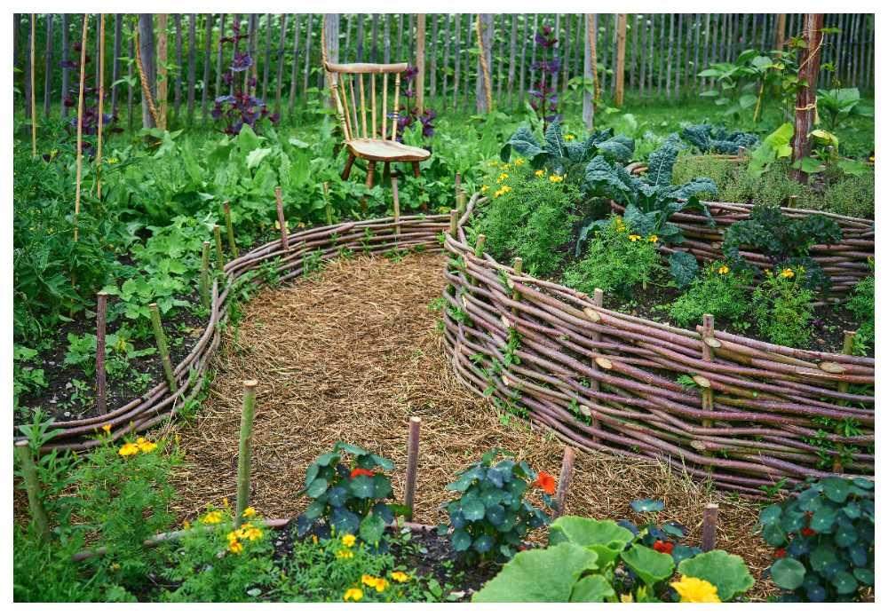 Slopa gifterna i din trädgård.