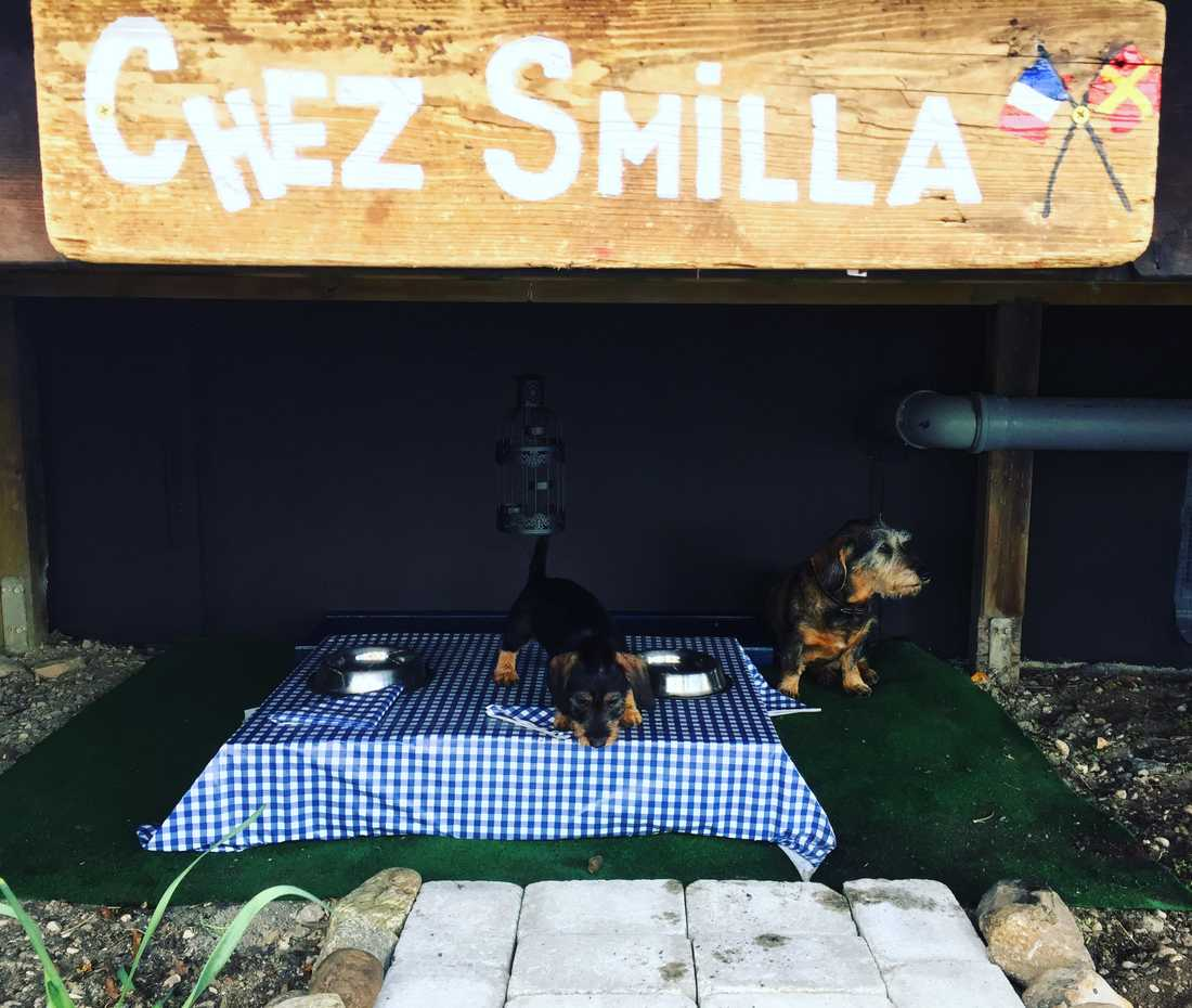 Chez Smilla – krogen för hundar.