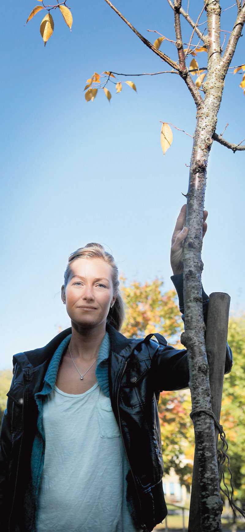 Här i Blecktornsparken i Stockholm har familjen planterat ett körsbärsträd till Jacobs minne.
