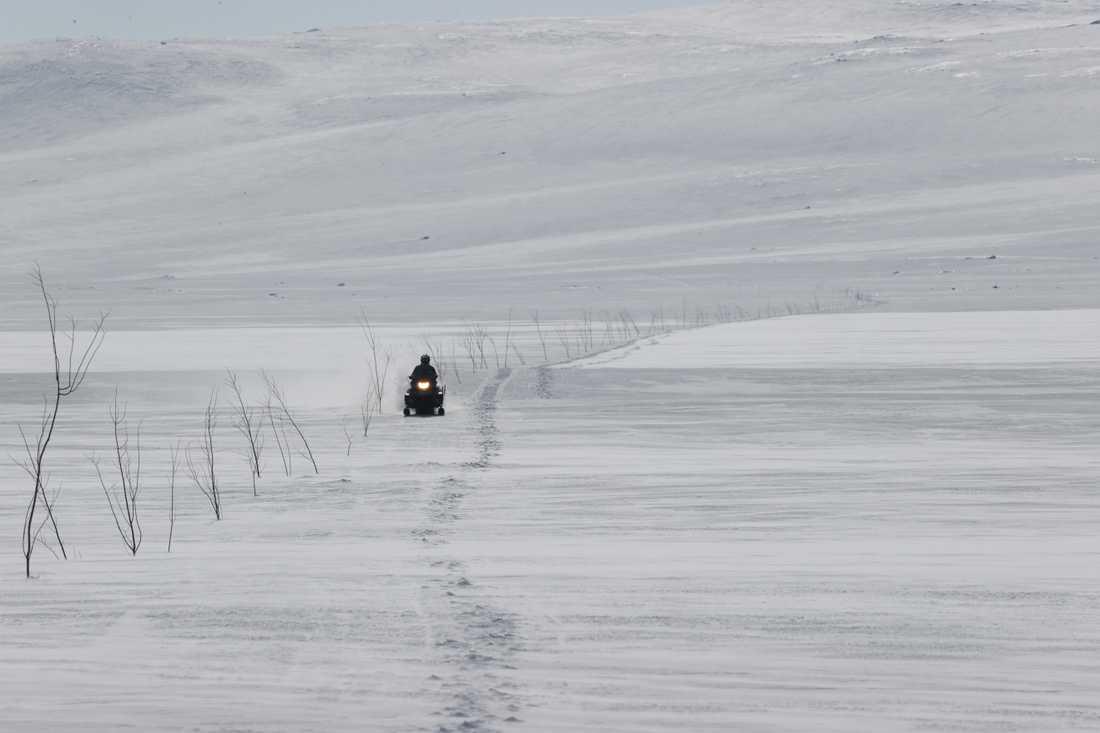 Snöskotrar får fortsätta att köra på samebyarna Gabna och Laevas renbetesmarker säsongen ut, enligt Kiruna kommun. Arkivbild.