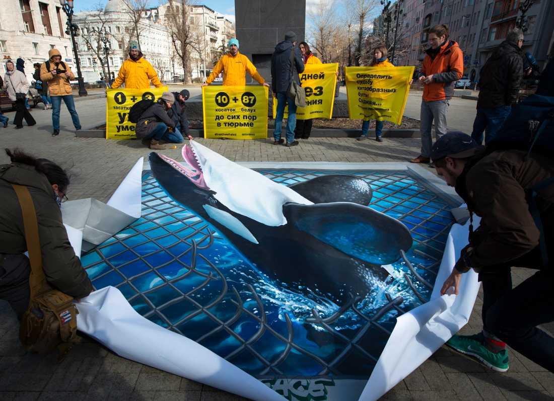 """Aktivister demonstrerar mot """"valfängelset"""" i östra Ryssland i Moskva den 2 april."""