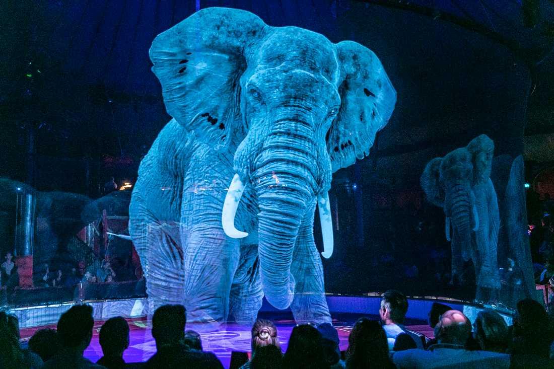 Cirkusen blir först i världen att använda hologramdjur.