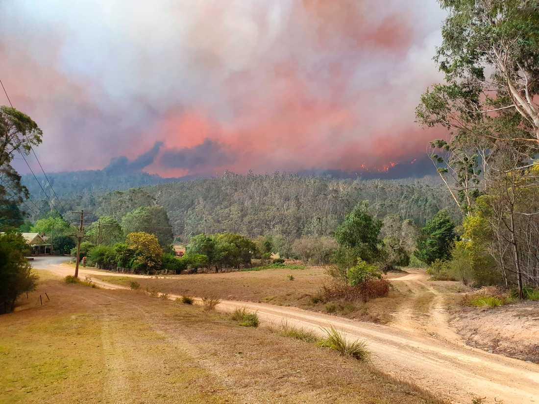 Bränderna härjar i Australien – men inte hela landet är drabbat.