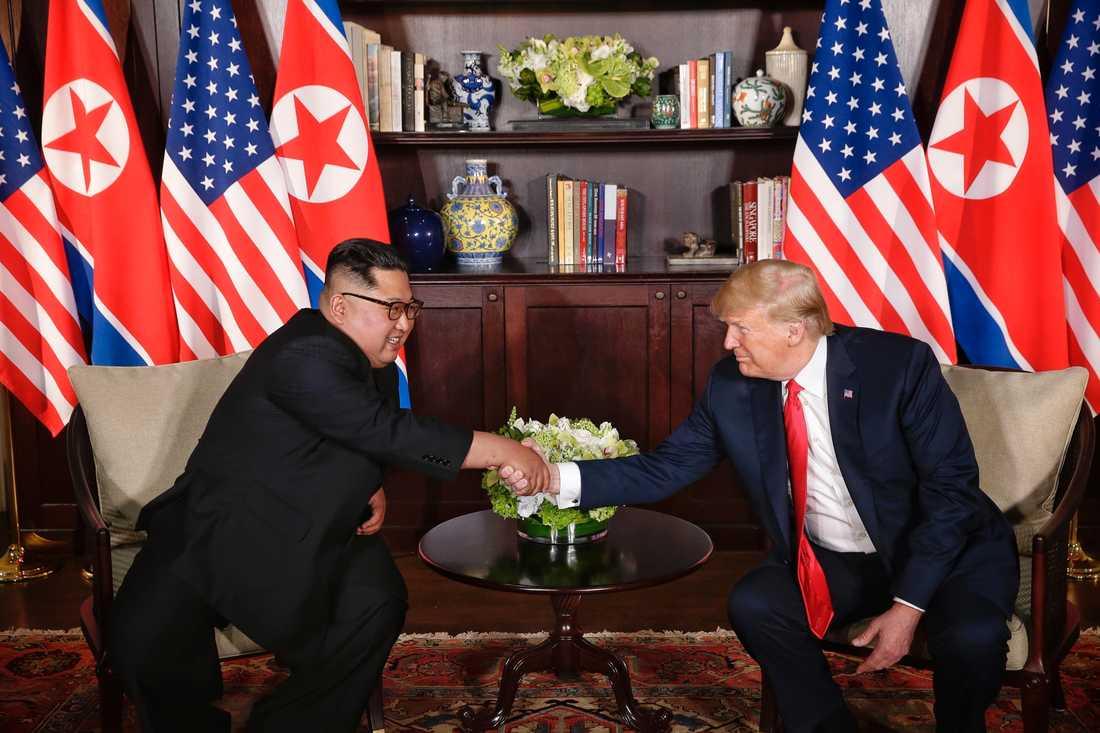 – Det är en stor ära för mig att vara här, sa Donald Trump.