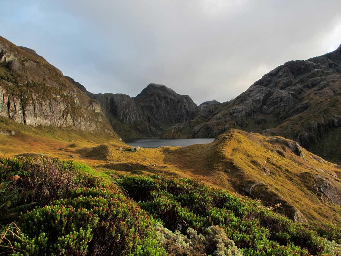 Nya Zeeland vill växla upp kampen mot klimatförändringarna ytterligare. Arkivbild.