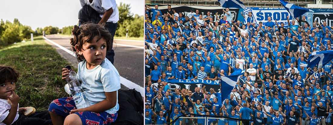 Flyktingar på väg mot serbisk-kroatiska gränsen under gårdagen. Lech Poznans supportrar är kända för att vara några av de mest högljudda i Europa.