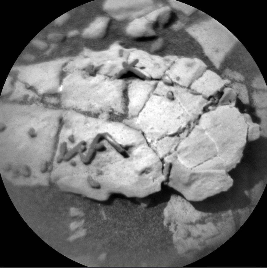 Curiositys kamera har tagit bilder av maskliknande former – som kan vara fossiler.