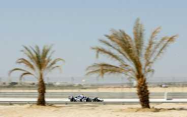 Körning bland sand och palmer.