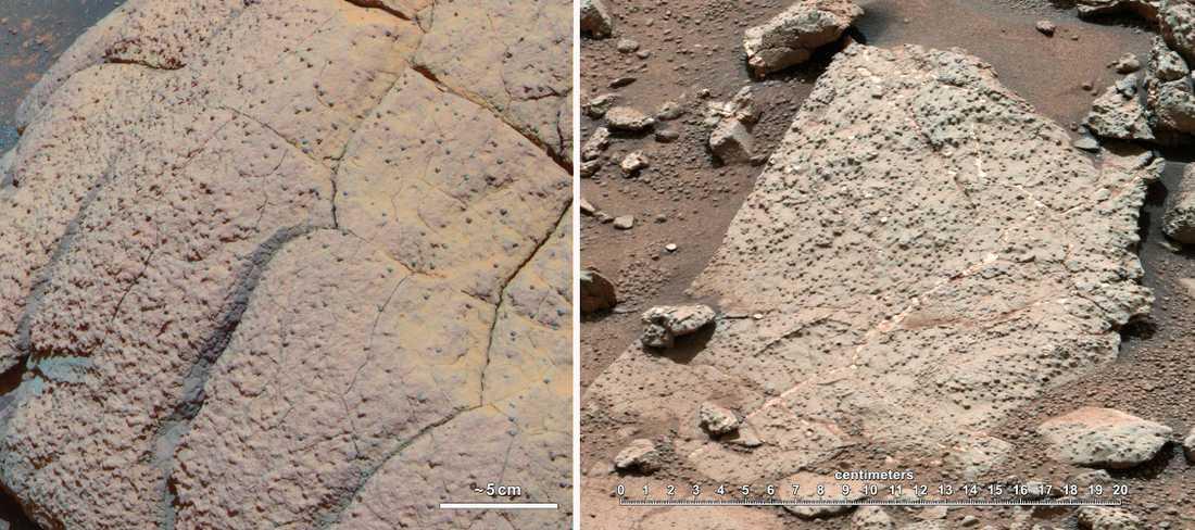 Stenen innehöll mineraler av väte, syre och kol.
