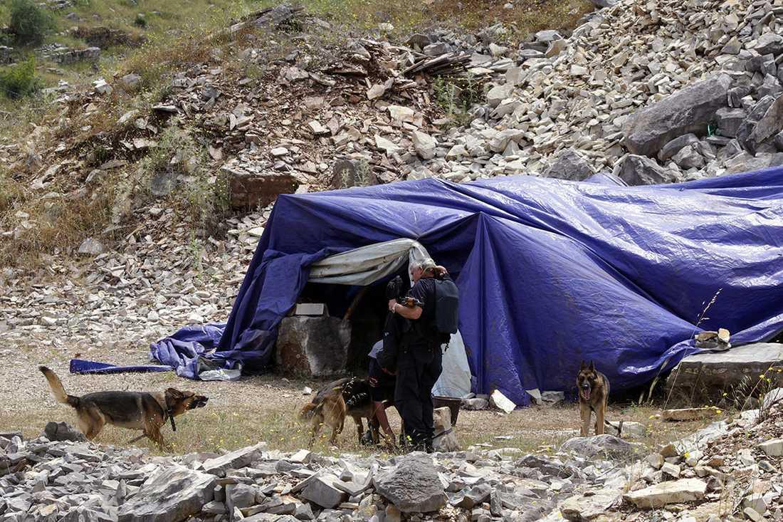 Här genomsöker specialpoliser och knarkhundar ett tält där det kan ha odlats cannabis.