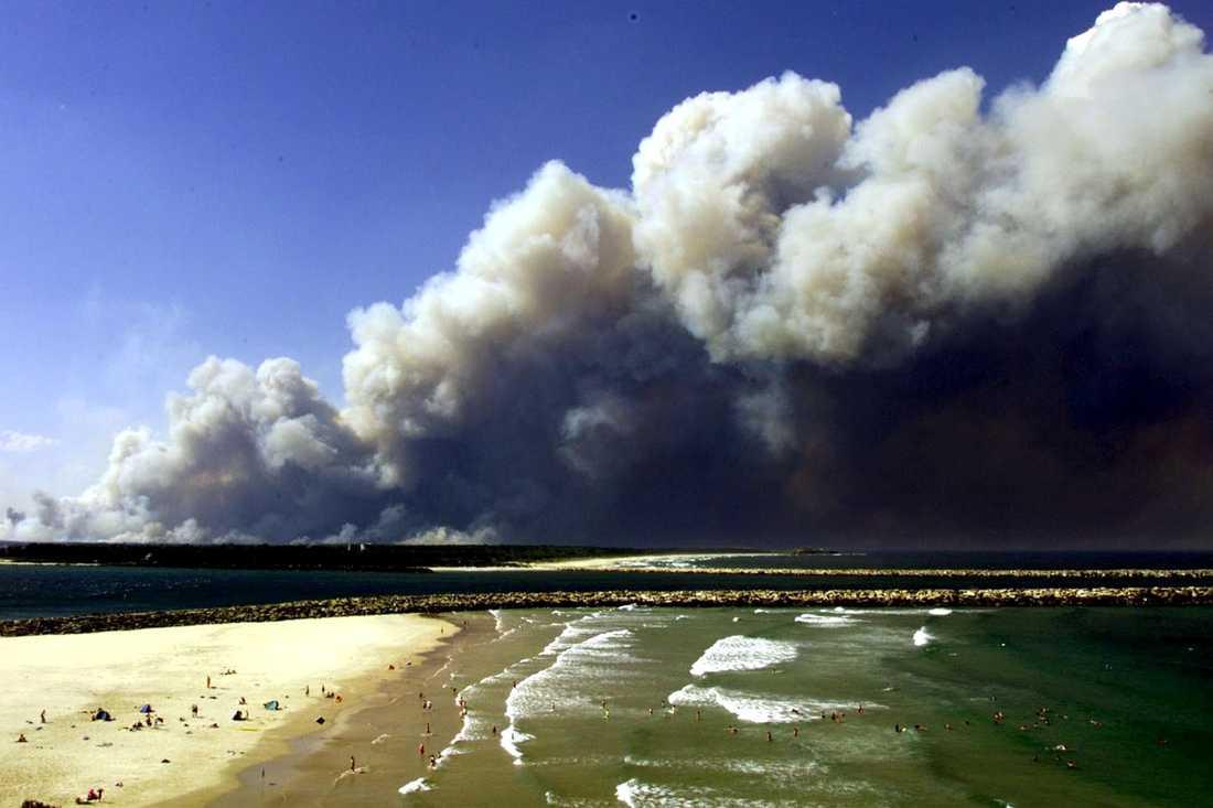 Brandröken förmörkade himlen över New South Wales, bild tagen i slutet på december.
