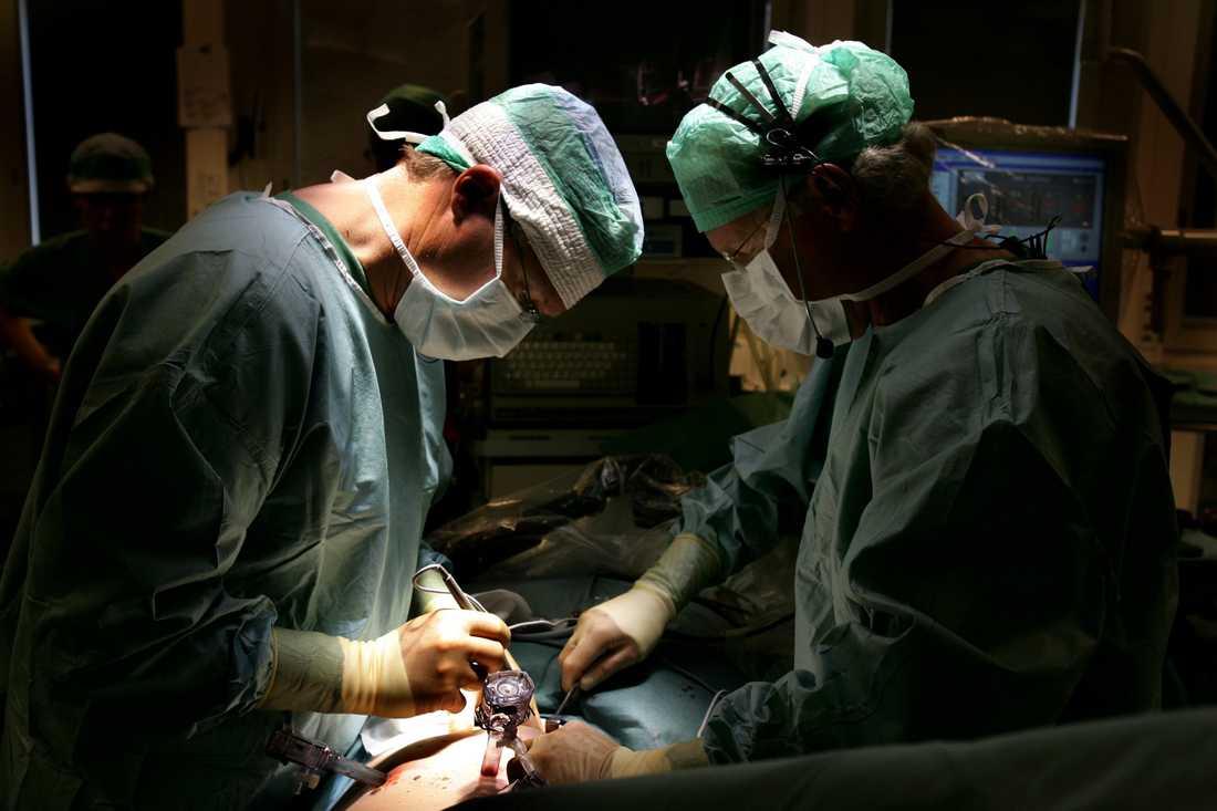 Det behövs fler levande personer som kan tänka sig att donera en njure. Arkivbild.