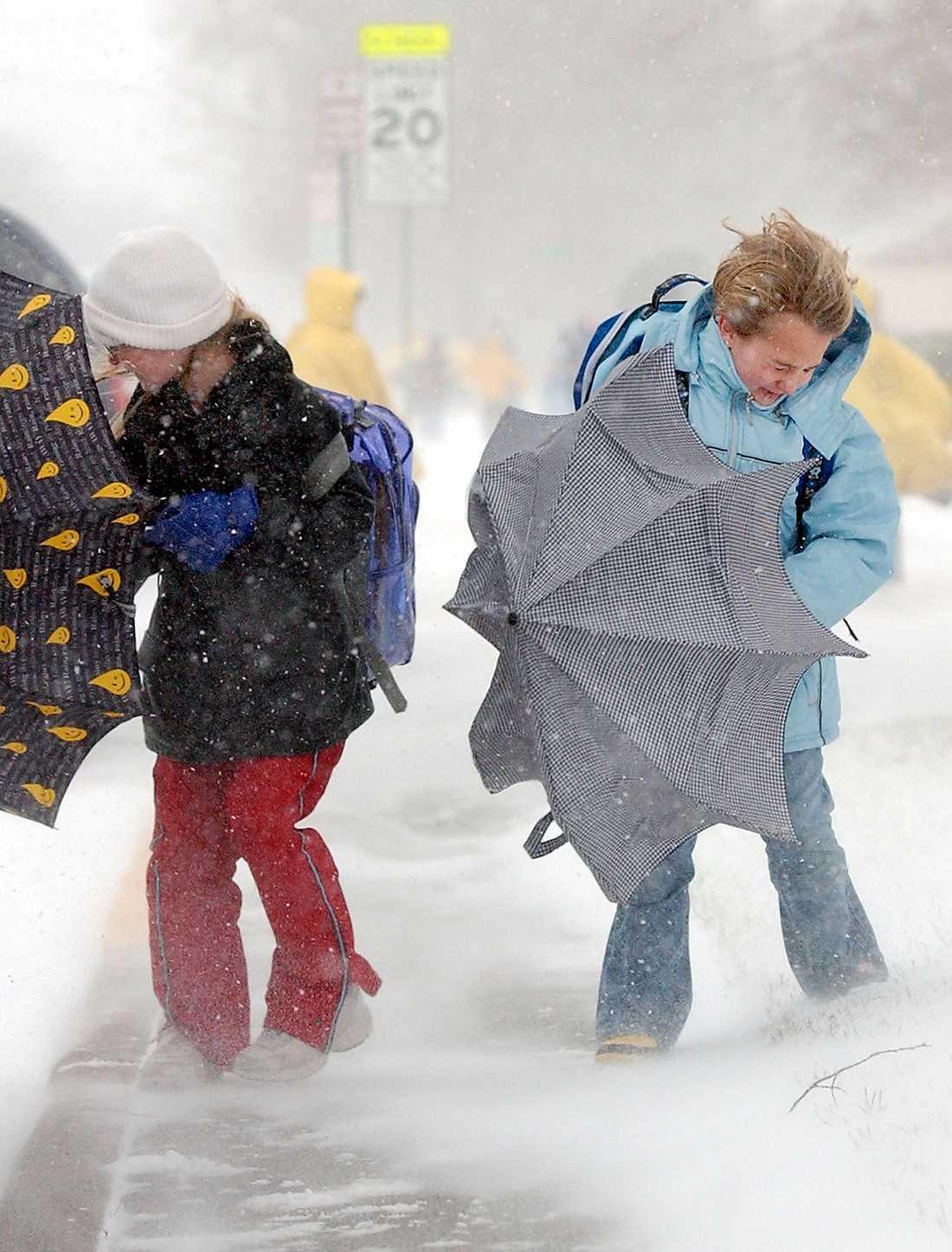 Södra Sverige har mycket hårda vindar att vänta i dag.