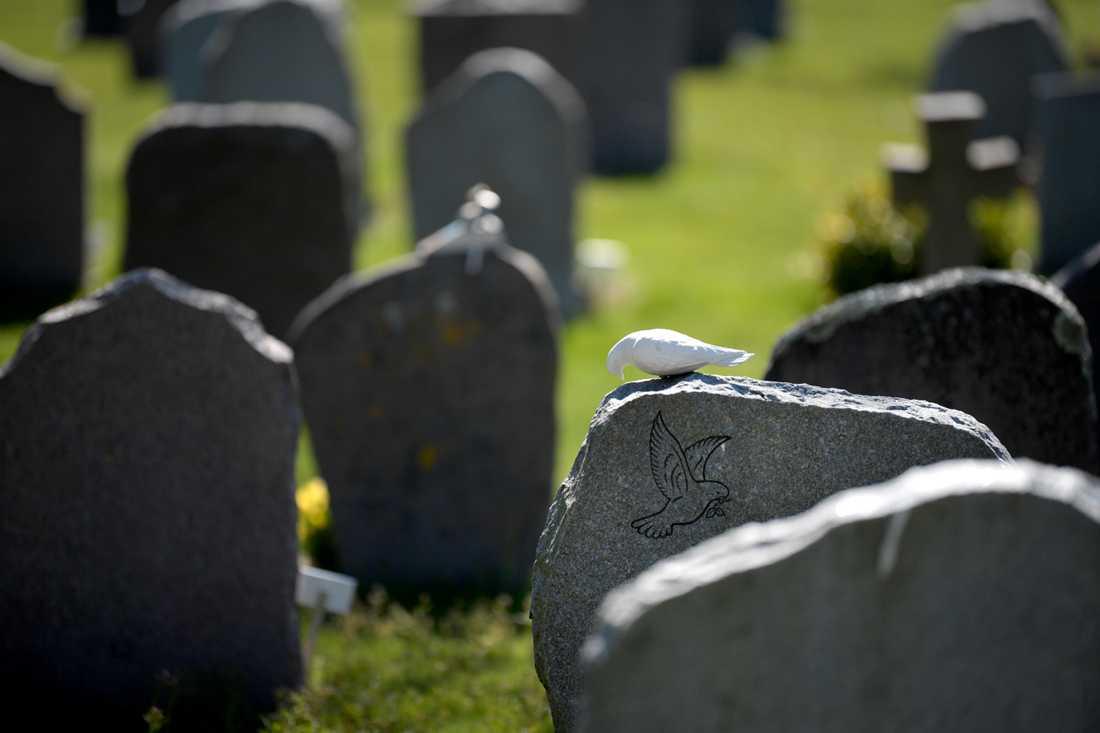 Varje år avlider cirka 90000 personer i Sverige. Dödsorsaken kan ofta vara svår att fastställa.