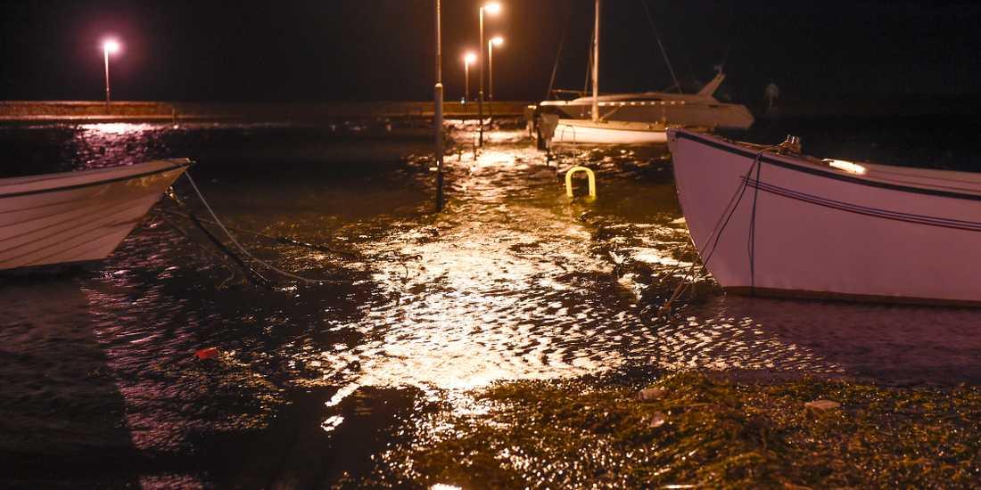 Högt vattenstånd i Skanörs hamn. Nu har Falsterbonäset blivit Skånes största ö, enligt SCB. Arkivbild.