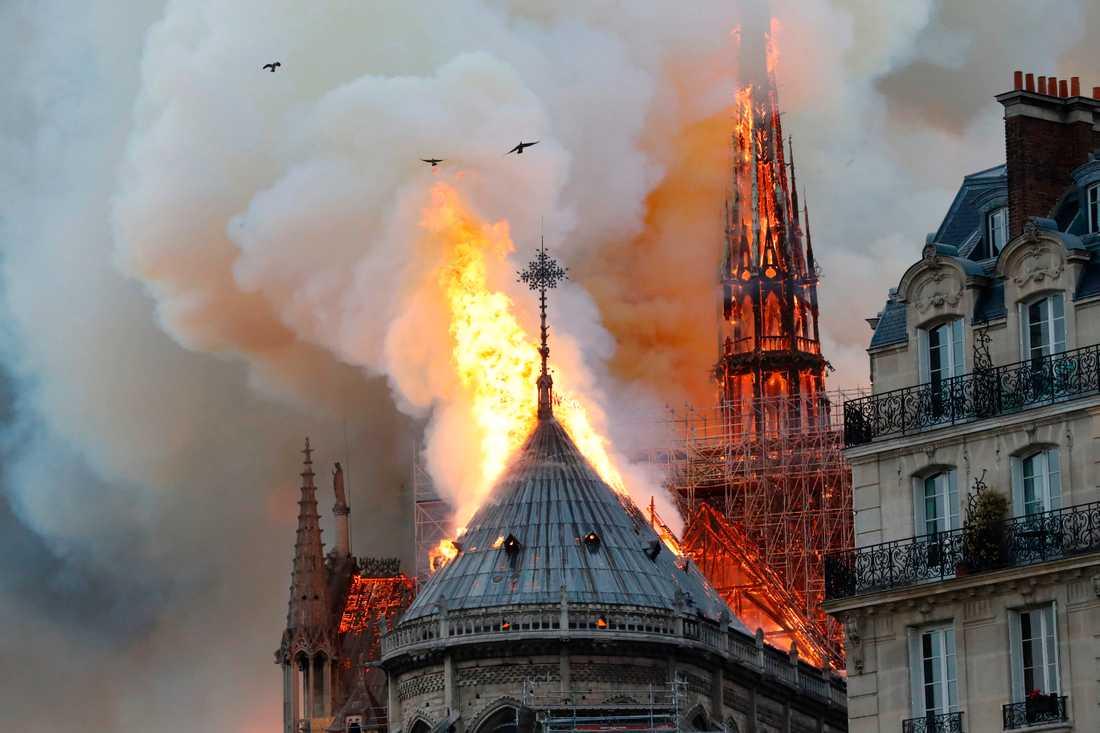 Rök och lågor slår ut från Pariskatedralen Notre-Dame som brann på måndagskvällen.