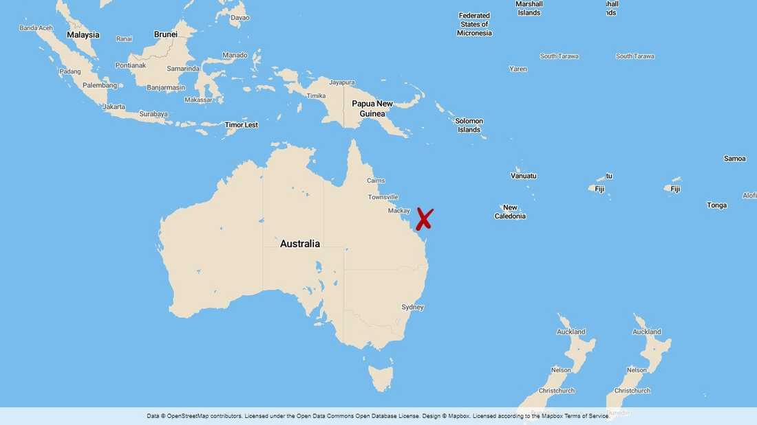 En man har avlidit efter att ha attackerats av en haj vid Stora barriärrevet i Australien.
