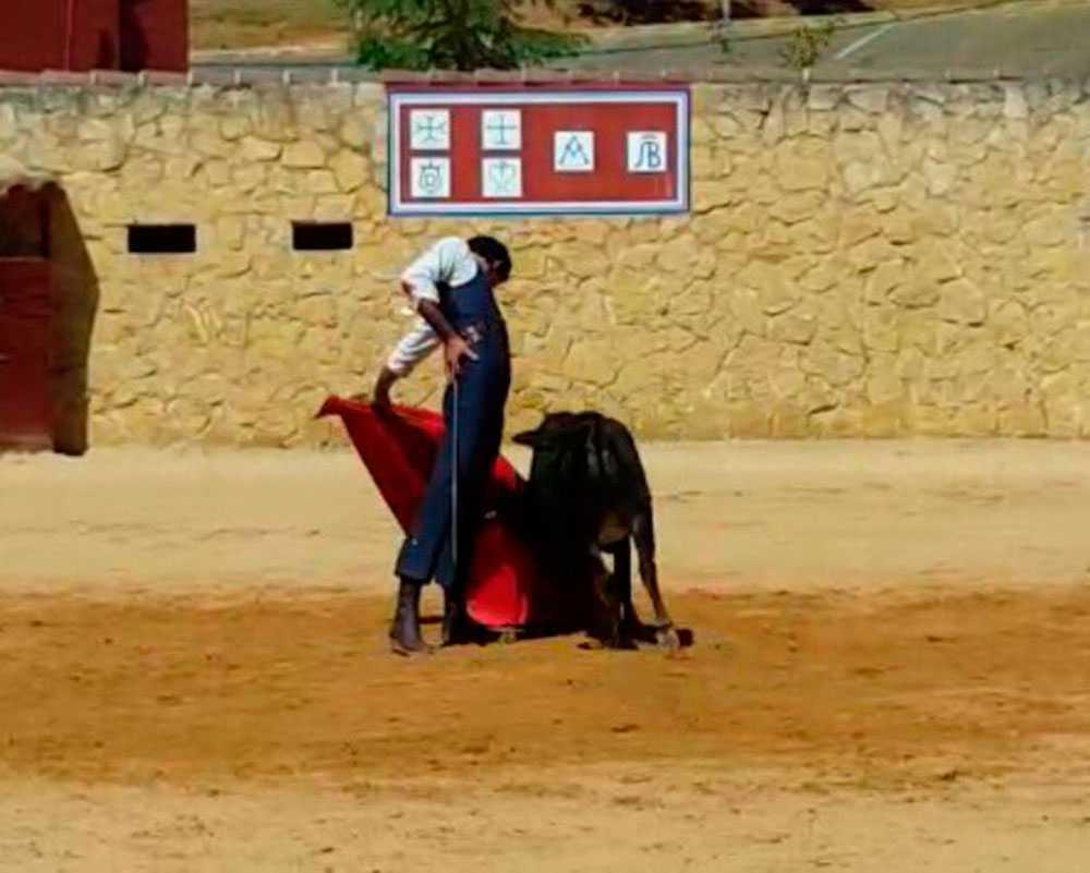 Victor Barrio la upp den här bilden den 4 juli på sin Twitter när han tränade inför tjurfäktningen.