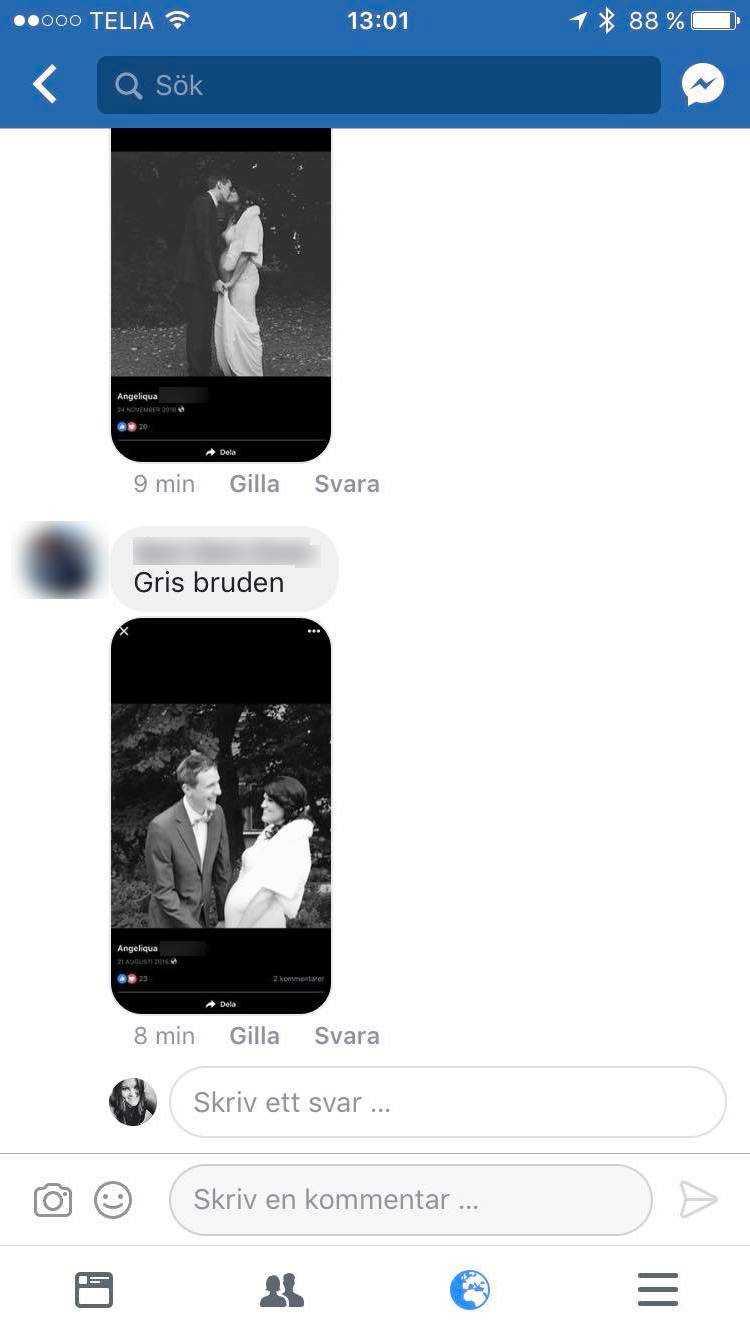 """""""Grisbruden"""""""